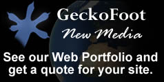 GeckoFoot New Media